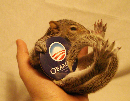 obama-squirrel