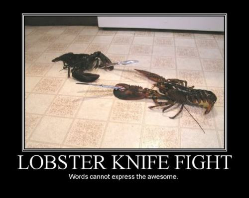 lobster_knife_fight